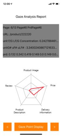 e-commerce_gaze analysis report